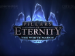 Pillars of Eternity: The White March - Addon hat einen Release-Termin