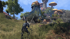 The Elder Scrolls Online Morrowind Eindruecke aus der Beta