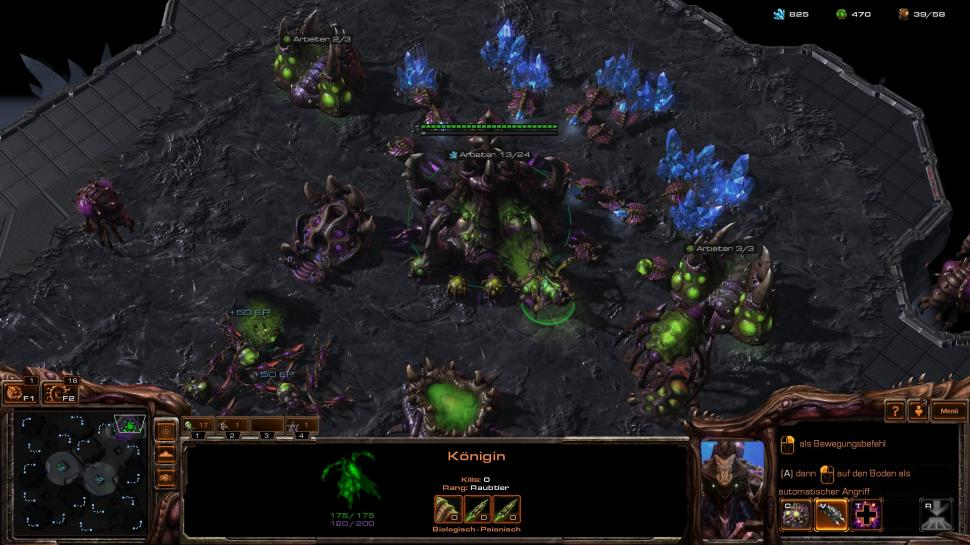 Starcraft 2: Gratisumbenennung für alle Accounts (1)