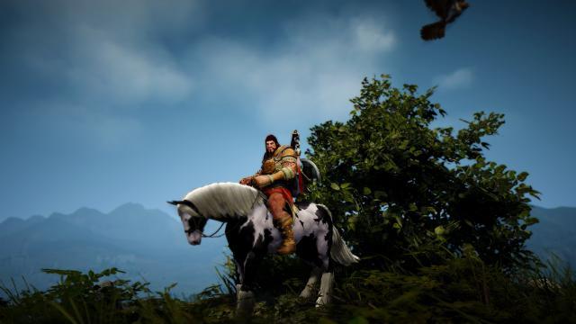 ohne hilfe auf pferd aufstieg