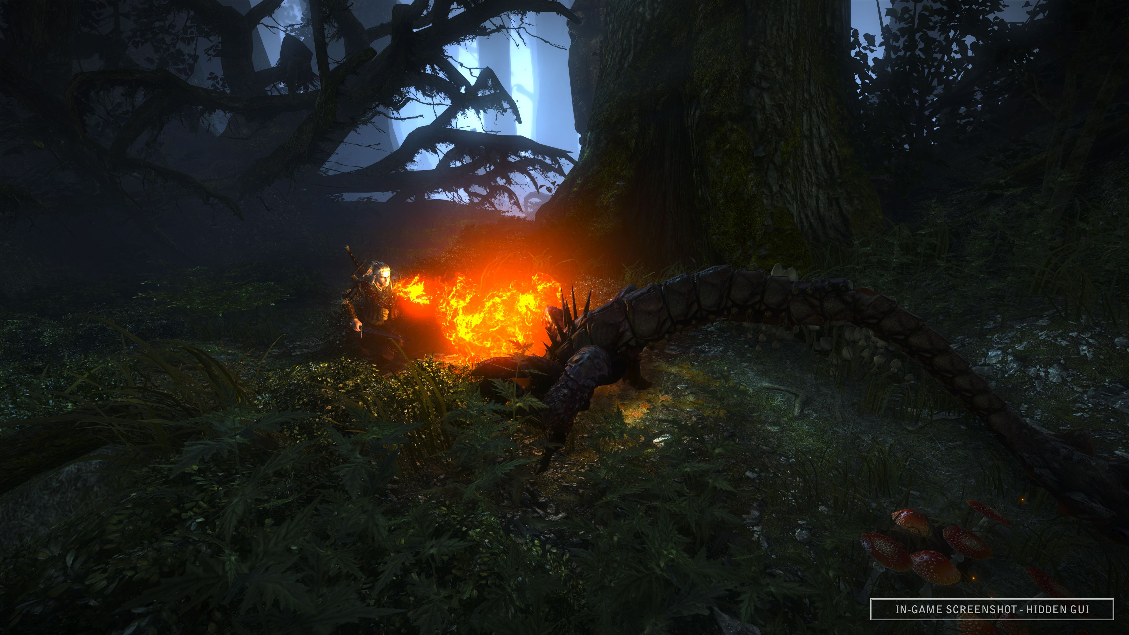 The Witcher 2 screens have kings, castles and swamp monsters.