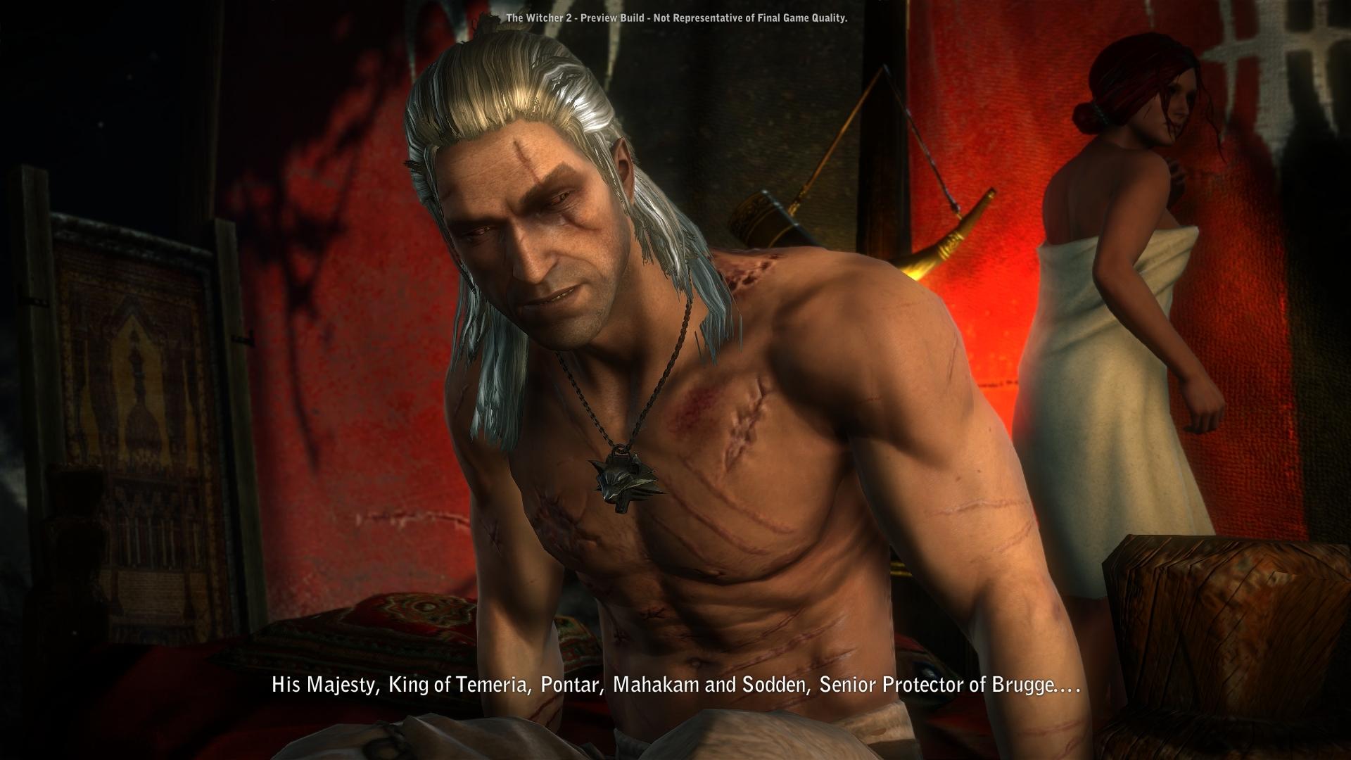 The Witcher Screenshot 09.04.2011 (3) .