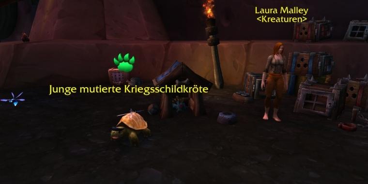 how to start pet battles legion