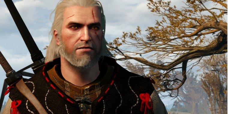The-Witcher-3-maxed-und-downsampled-318-